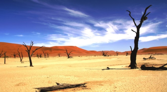 Namibia – Dunes and Delicacies